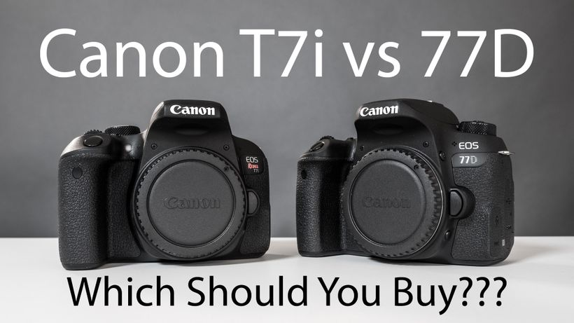 Canon T7i and Canon 77D