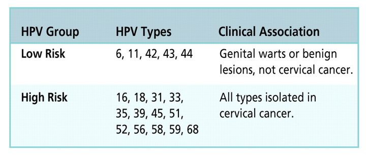 <p><em>Classification of types of human papillomavirus (HPV) based on their oncogenic potential.</em> </p>