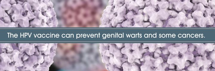 <p>HPV vaccines can prevent some of the health effects caused by the virus. </p>