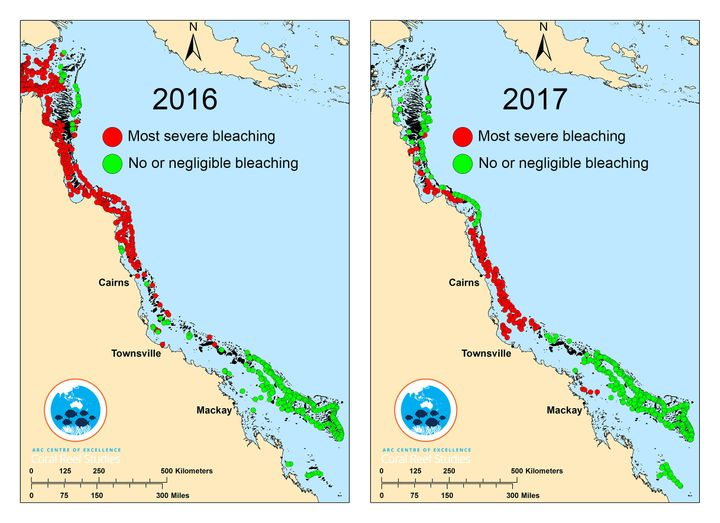 In 2016, the northern third of the Great Barrier Reef was hit with widespread bleaching. Scientists say this year the mi