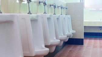 row white urinals in men's bathroom toilet