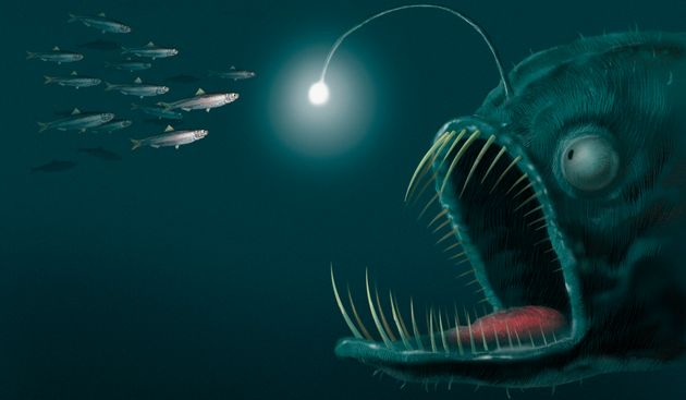 An computer generated illustration of an angler