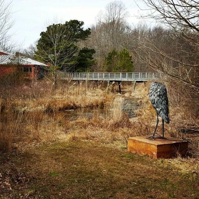 <p>Adkins Arboretum, Ridgely MD</p>