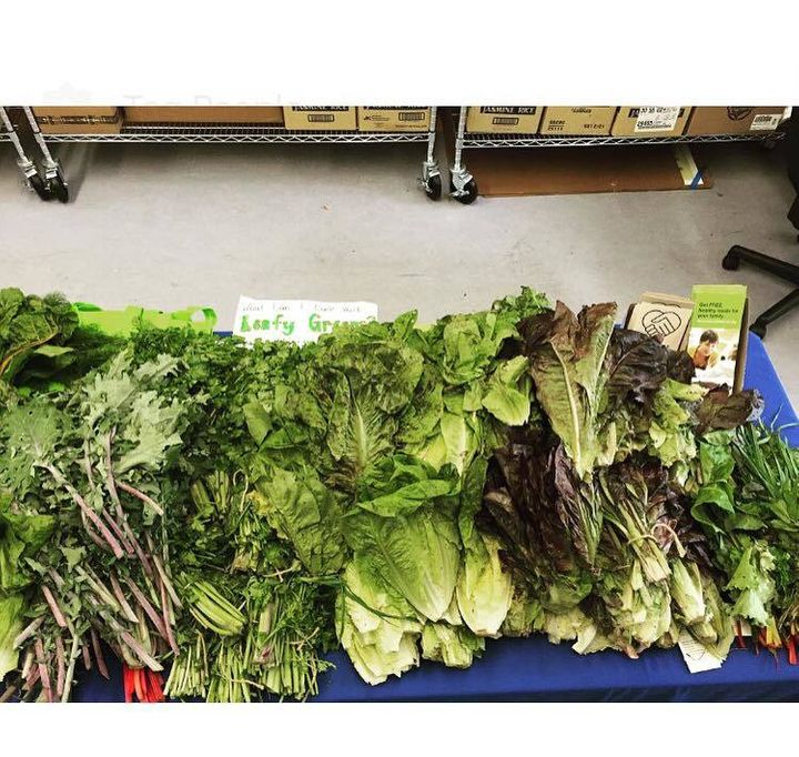 A few salad greens donated to the Berkeley Food Pantry.