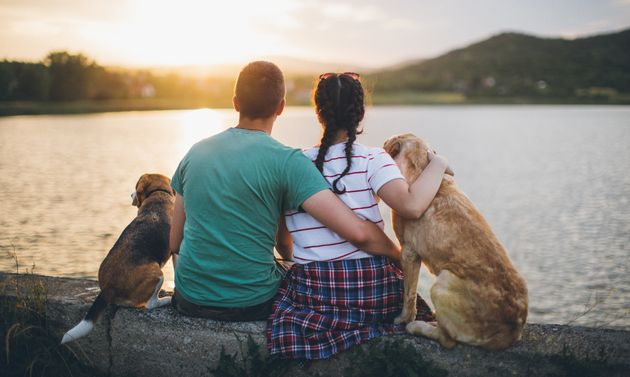 8 Reasons A Dog Owner Is The Ideal