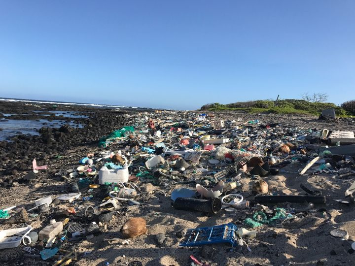 The Hawaii Wildlife Fund organizes regular cleanups at Kamilo Point on Hawaii's Big Island.