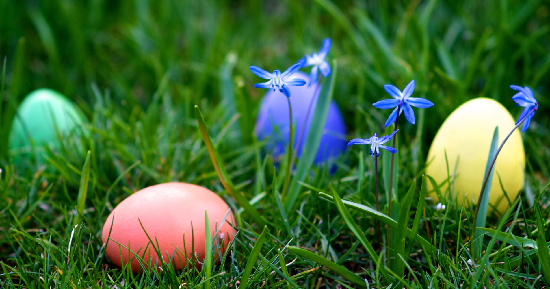 How People Are Making Easter Egg Hunts Accessible For Kids ...