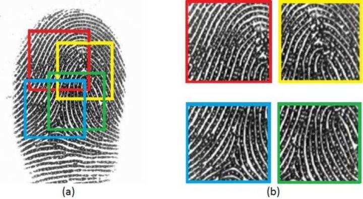 Just how unique are partial finger prints?
