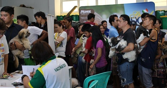 At the launch event pet owners line up to have their dogs vaccinated against rabies