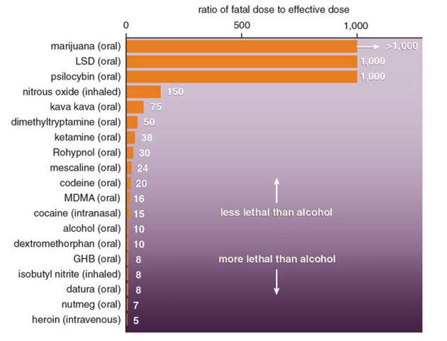 Alcohol is far more toxic than several popular illicit