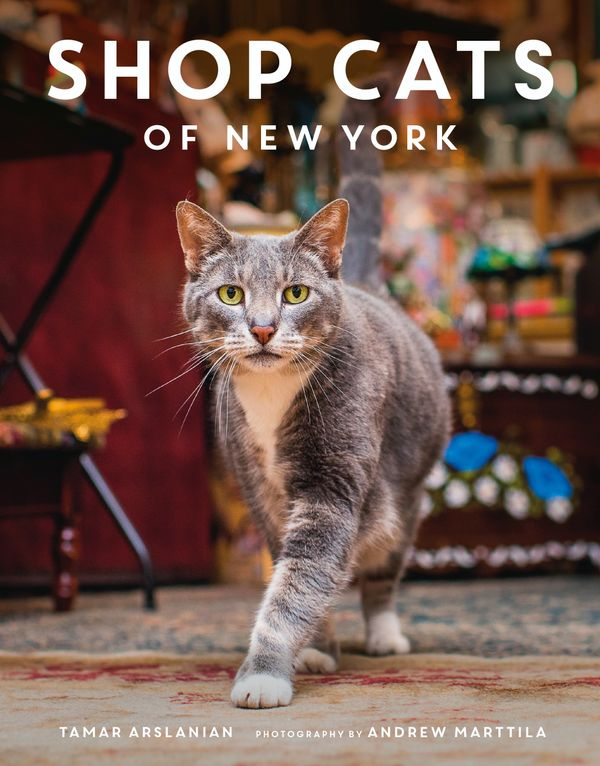 This resident of Dream Fishing Tackle in Greenpoint, Brooklyn made the cover of the book.
