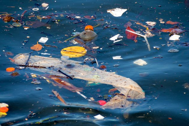 The Arctic Ocean is accumulating a high concentration of plastic, broken down over time into smaller...