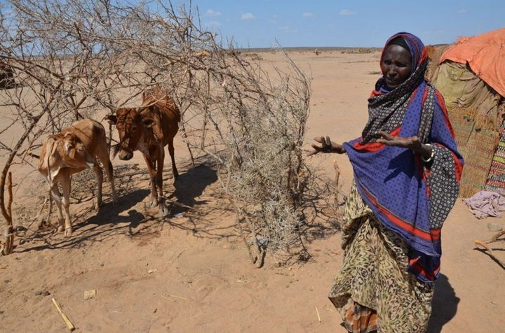 Farmers in Ethiopia and other drought affected nations need food assistance to survive.