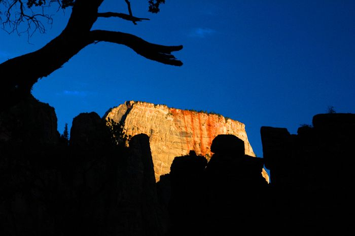 """<a rel=""""nofollow"""" href=""""http://nationalparksimages.org/zion/"""" target=""""_blank"""">Zion National Park</a>, Utah(4,295,127 visitor"""