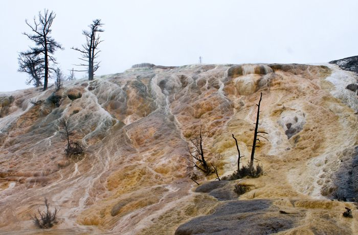 """<a rel=""""nofollow"""" href=""""http://nationalparksimages.org/yell/"""" target=""""_blank"""">Yellowstone National Park</a>, Idaho/Montana/Wy"""