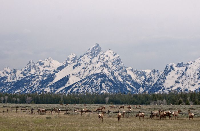 """<a rel=""""nofollow"""" href=""""http://nationalparksimages.org/grte/"""" target=""""_blank"""">Grand Teton National Park</a>, Wyoming(3,270,0"""