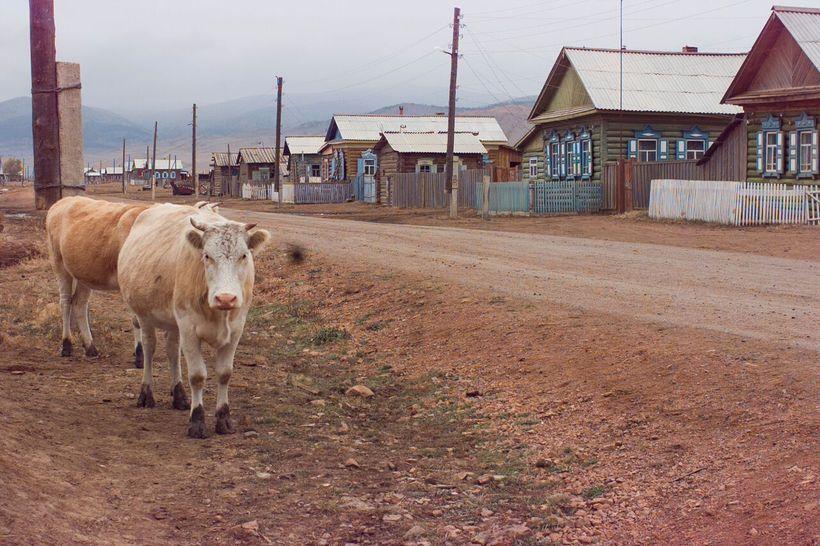 The village of Galtai, 1995