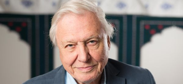 Sir David Attenborough Admits Memory Problems Are Making His Job Harder