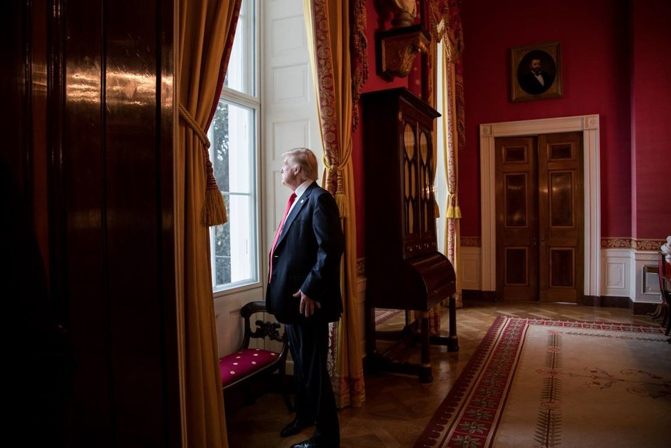 President Donald Trump looks out of the Red Room window onto the South Portico of the White House grounds on Jan. 20, 2017, b