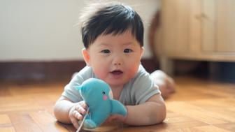 7 months old baby boy playing toy whale while lying on wooden floor