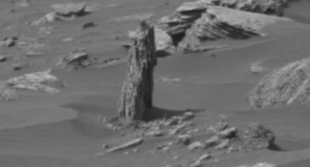 Alien Hunters Claim This 'Tree Stump' Is Proof There Was Once Life On