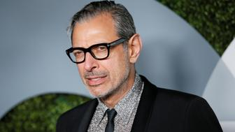Actor Jeff Goldblum poses at the GQ Men of the Year Party in West Hollywood, California, December 8, 2016. REUTERS/Danny Moloshok