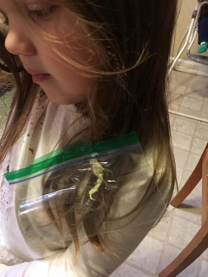 La curiosa solución de este padre cuando su hija se pegó un chicle en el