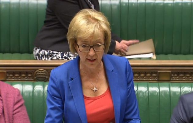 Environment Secretary Andrea Leadsom speaks in the House of Commons, London, where she told MPs that...