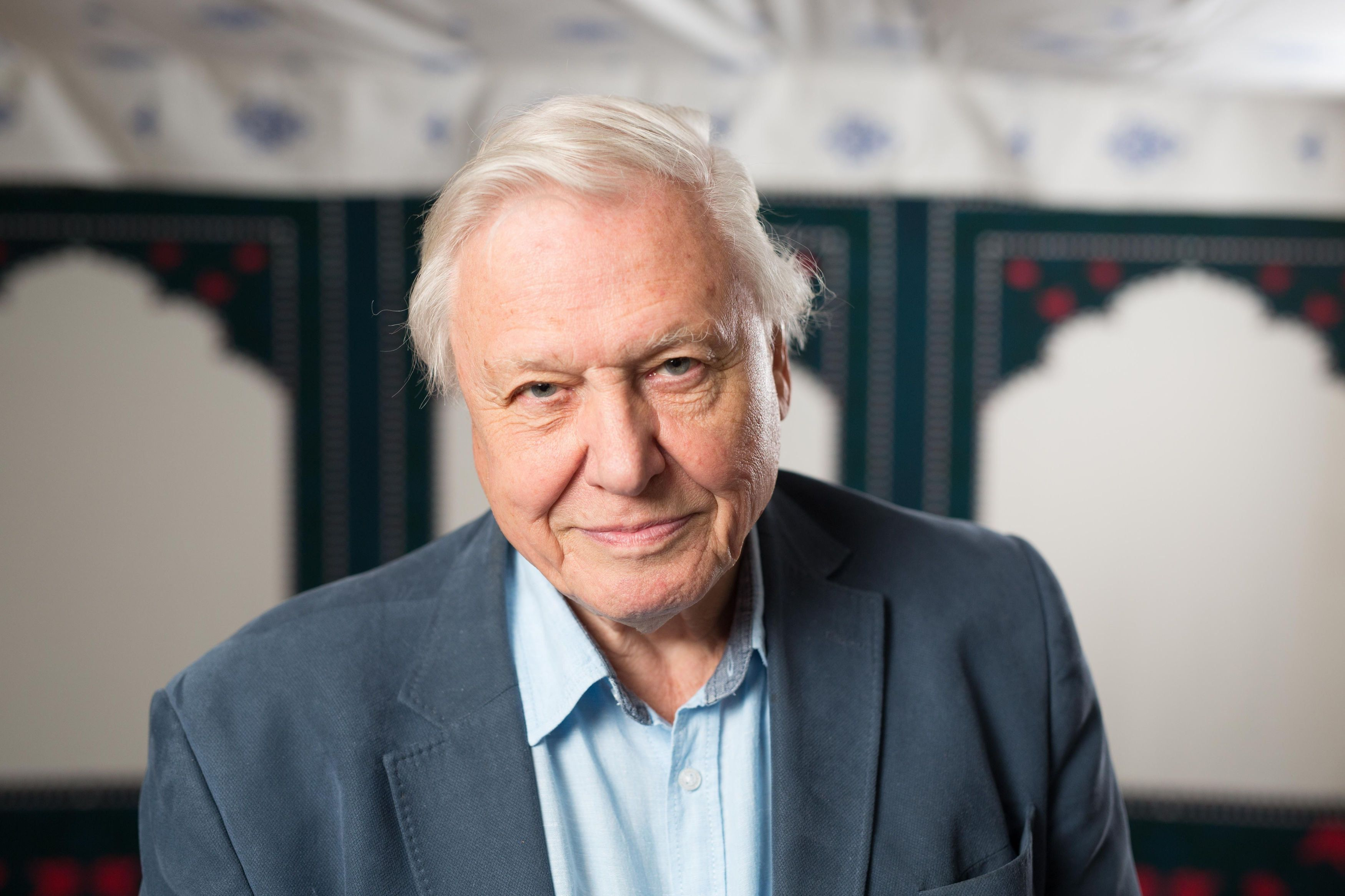 Famed naturalist David Attenborough said he doesn't remember plant names like he used to.