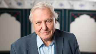 File photo dated 24/09/15 of Sir David Attenborough, as researchers from the universities of Oxford, Leicester, Yale and Imperial College London have given his name to a distant relative of today's shrimp and lobster.