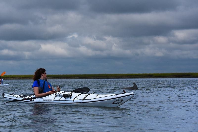 Kayaking is a popular water activity in Beaufort, with outfitters and guides available all year long. Don't be surprised if a