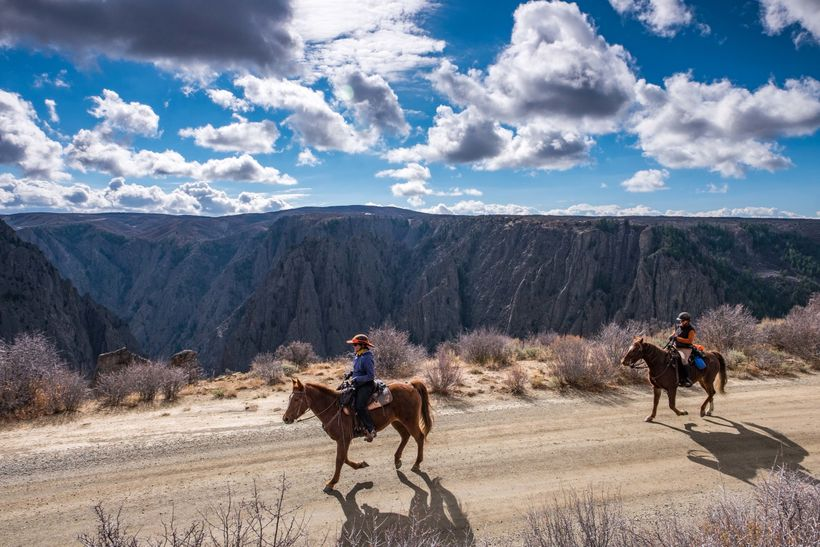 Equines take off for a rim ride to Deadhorse Trail