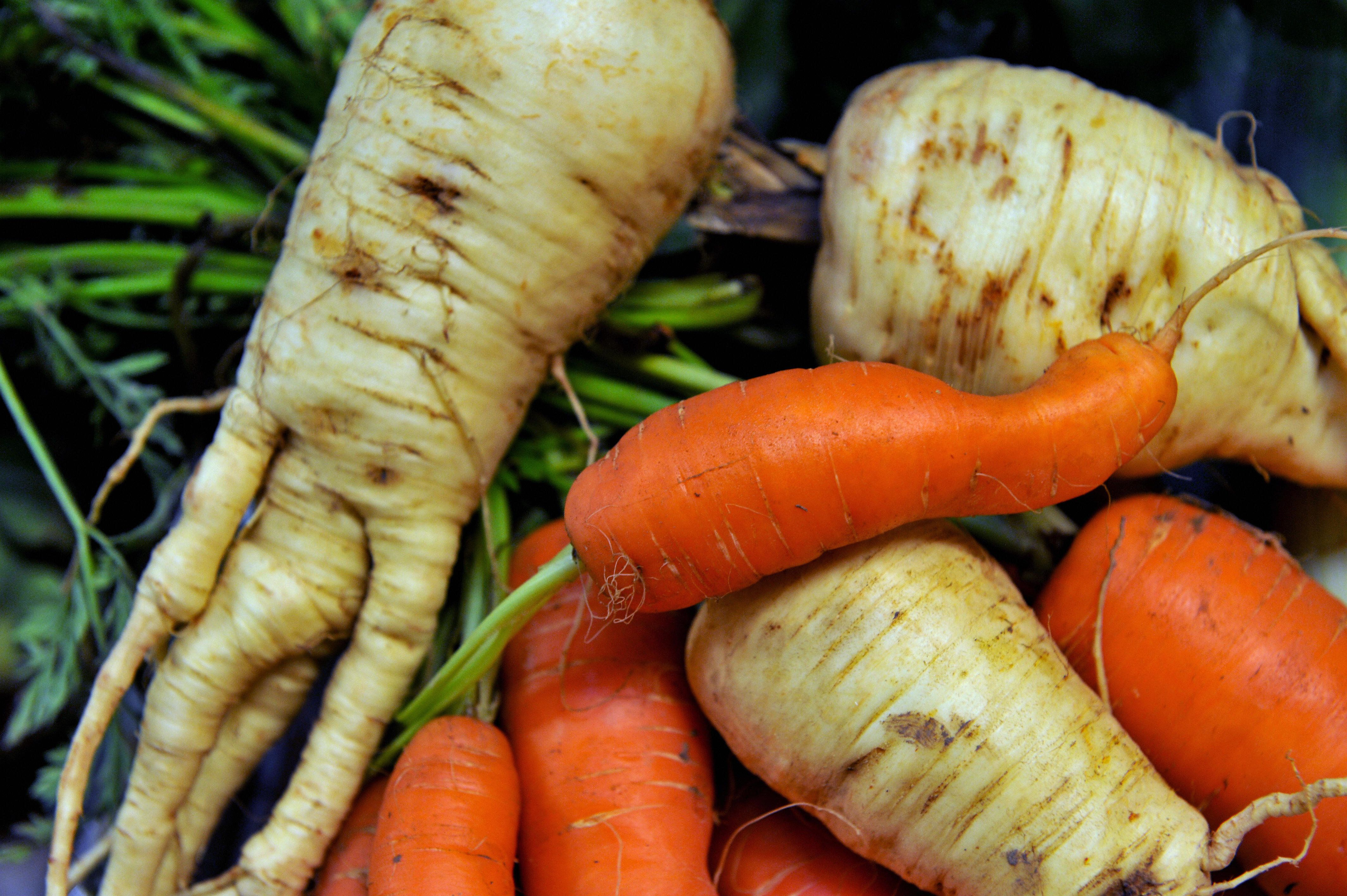 Sell Ugly Fruit And Veg To Cut Food Waste, MPs Urge Supermarkets