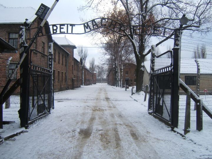 The book provides an account of Primo Levi's survival in Auschwitz.