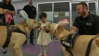 Police dogs are helping hospitalized children