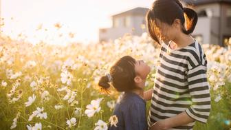 Sunset time,Mother anddaughterwith Cosmos flowers,Girl of 7 years old,Japanese family,Japan