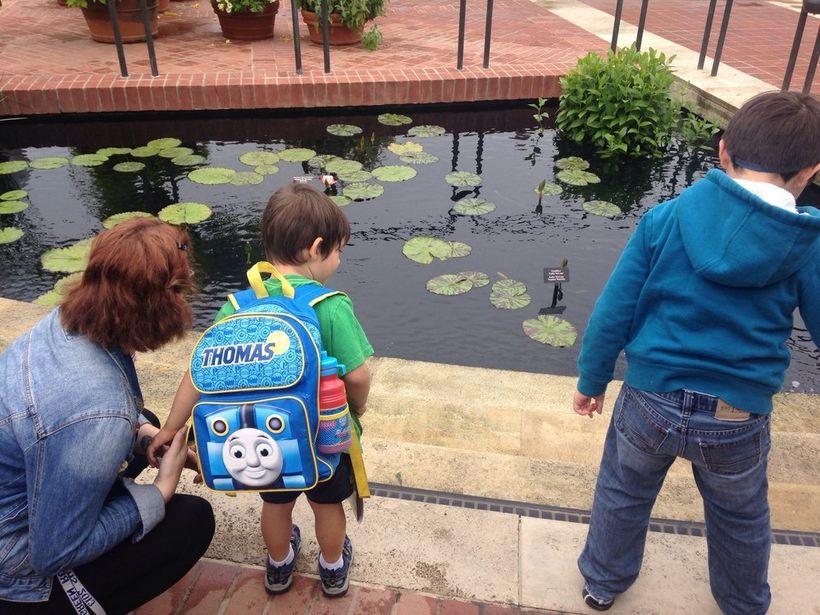 Autism Family Center's summer program last year.