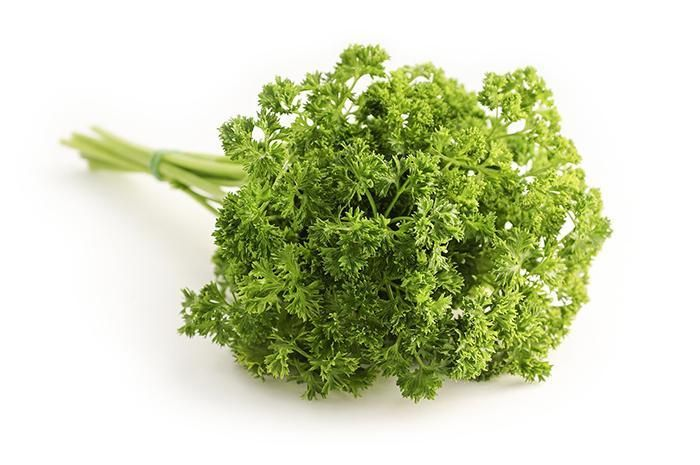 <p> <strong>Parsley</strong> </p>