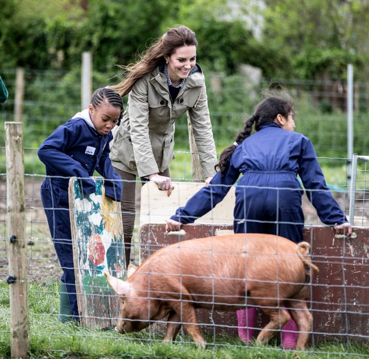 The Duchess of Cambridge holds a pig board as she helps children from Vauxhall primary school in London herd a pig into a pen to be weighed.