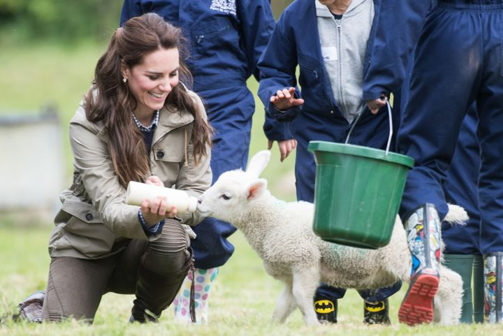 The Duchess of Cambridge feeds a lamb as she visits Farms for City Children on May 3, 2017 in Arlingham, Gloucestershire.