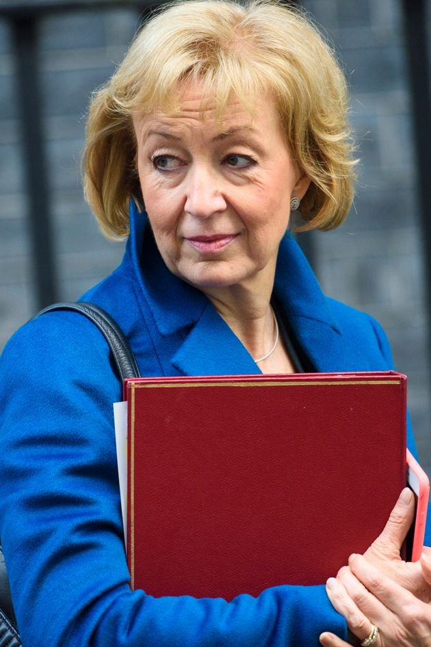 Andrea Leadsom MP, Secretary of State for Environment, Food and Rural