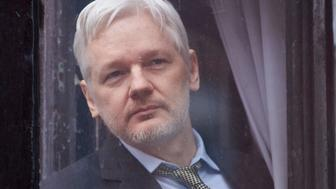 WikiLeaks founder Julian Assange looks out of the balcony window of the Ecuadorian embassy in central London on February 5, 2016 before addressing the media from the balcony. During a press conference on February 5 Julian Assange, speaking via video-link, called for Britain and Sweden to 'implement' a UN panel finding saying that he should be able to walk free from Ecuador's embassy, where he has lived in self-imposed confinement since 2012. / AFP / NIKLAS HALLE'N        (Photo credit should read NIKLAS HALLE'N/AFP/Getty Images)