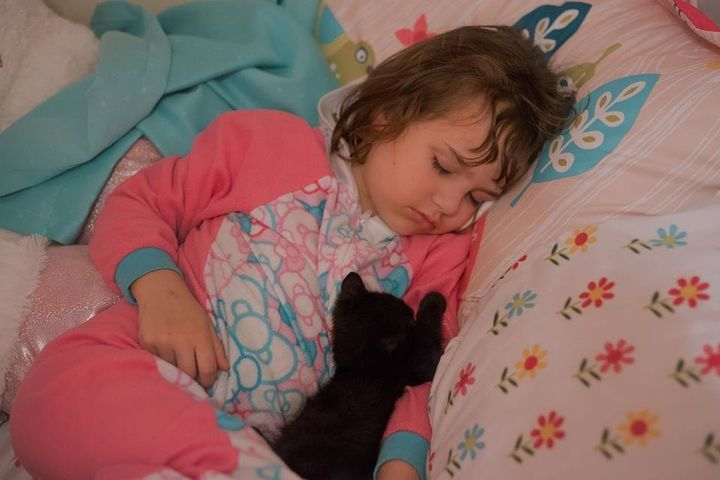 Amelie taking a nap with Luna.