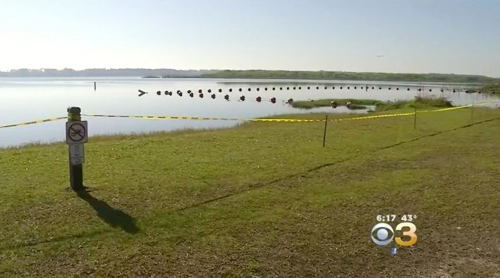The 10-year-old was swimming at this central Florida lake when she was attacked by