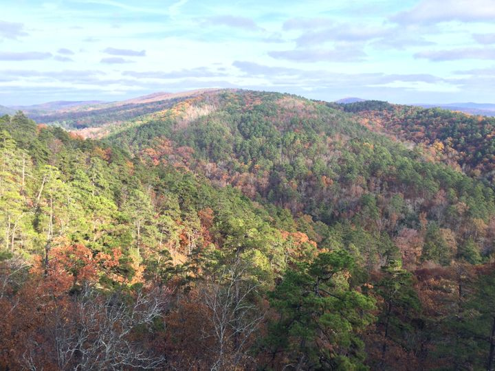 <p>The view from the peak of Hot Springs Mountain </p>