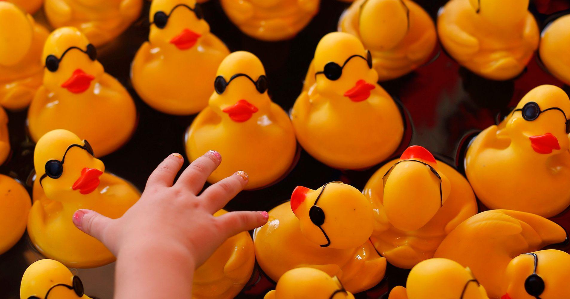 Toys & Hobbies New ! Wind Ups Toys 4 Animal Asst