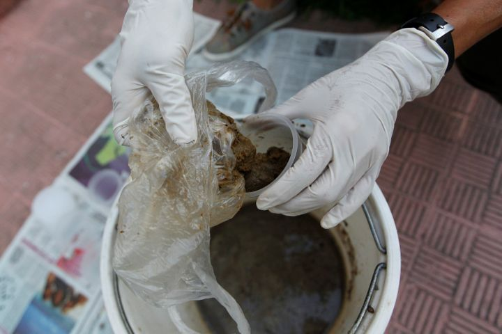 "A woman in Caracas, Venezuela, puts feces in a bucket to prepare ""Poopootovs,"" which is a play on Molotov cocktails, before t"