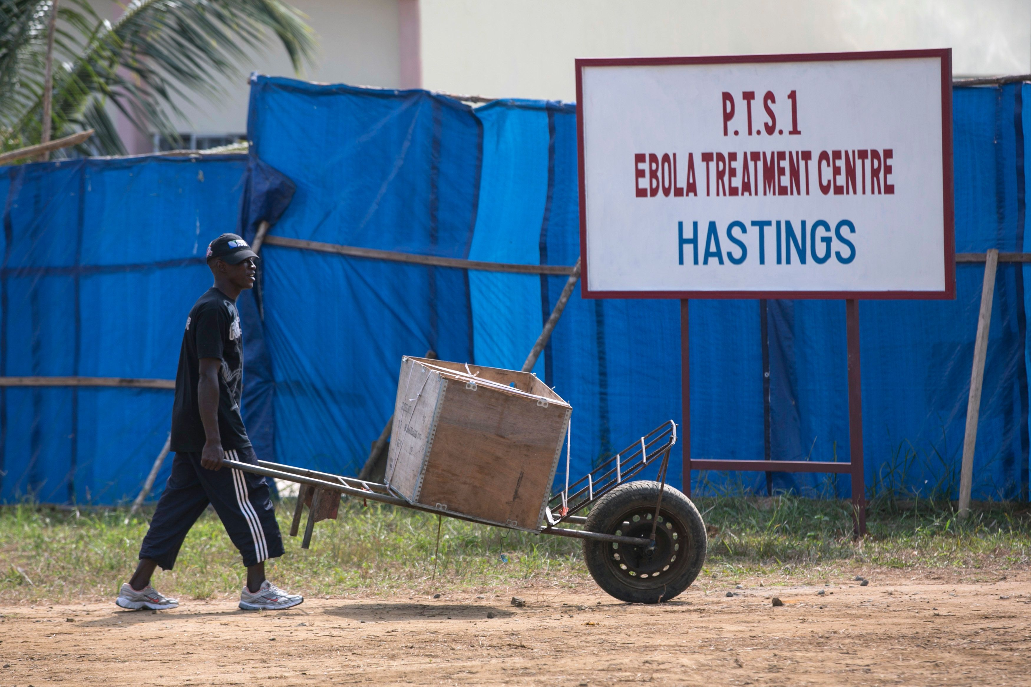An Ebola outbreak during 2014 killed more than 11,000 people in west