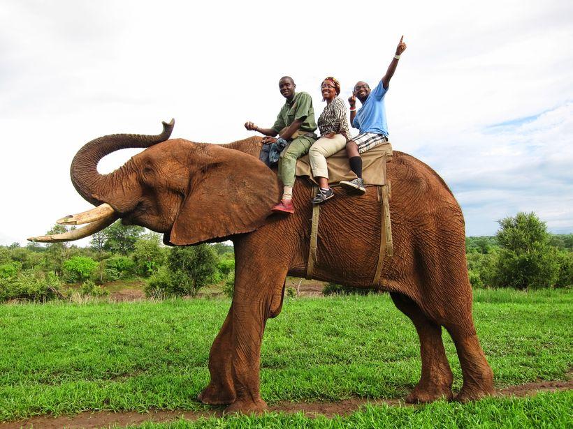 Elephant reserve in Zimbabwe