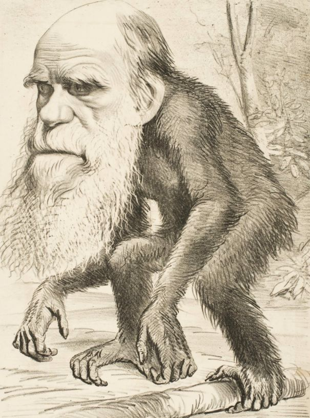 Students were asked to explain why Charles Darwin had been drawn as a